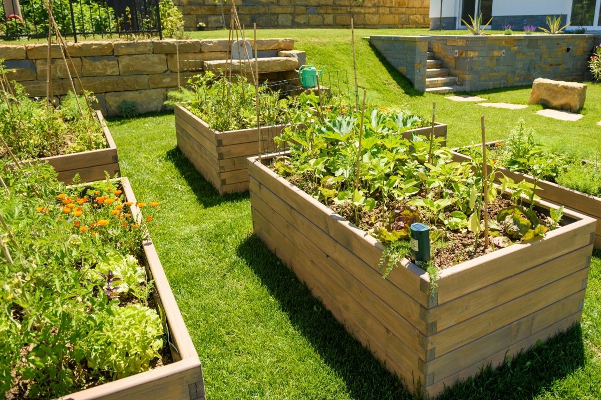 Tips to Keep Rodents and Wildlife Out of the Garden